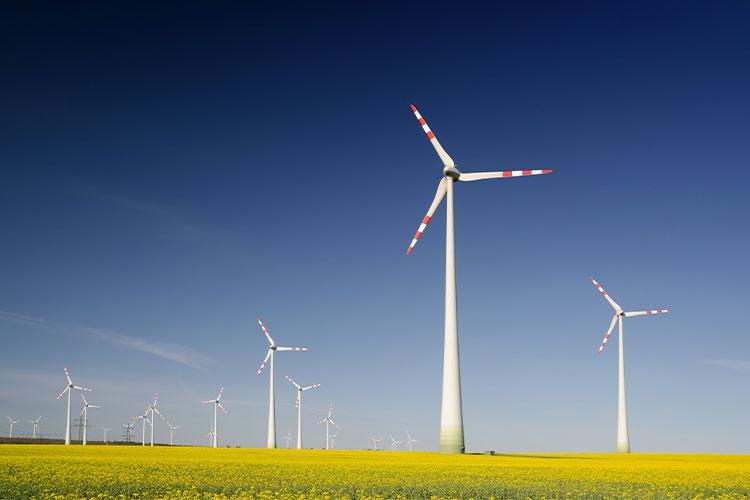 Windkrafträder